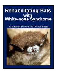 Rehabilitating Bats with WNS manual